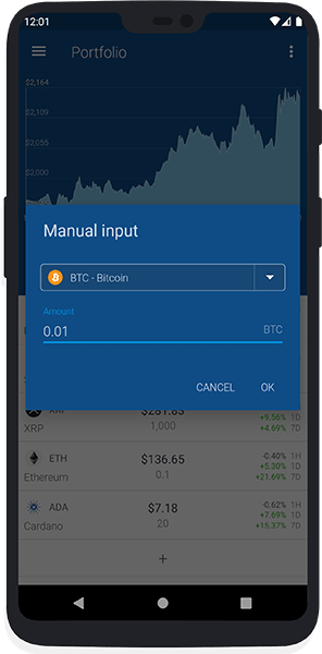 Portfolio (manual input)