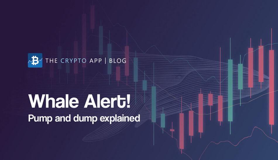 Bitcoin Whales Pump and Dump erklärt