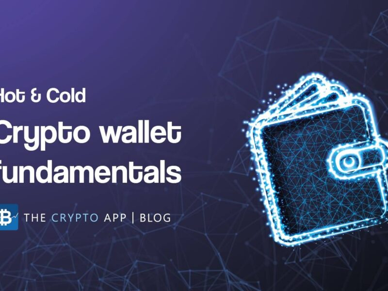 Hot and cold: Crypto wallets fundamentals