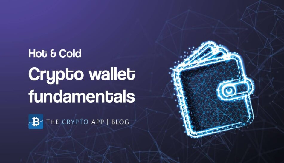 Hot And Cold Crypto Wallets (Blog post image)